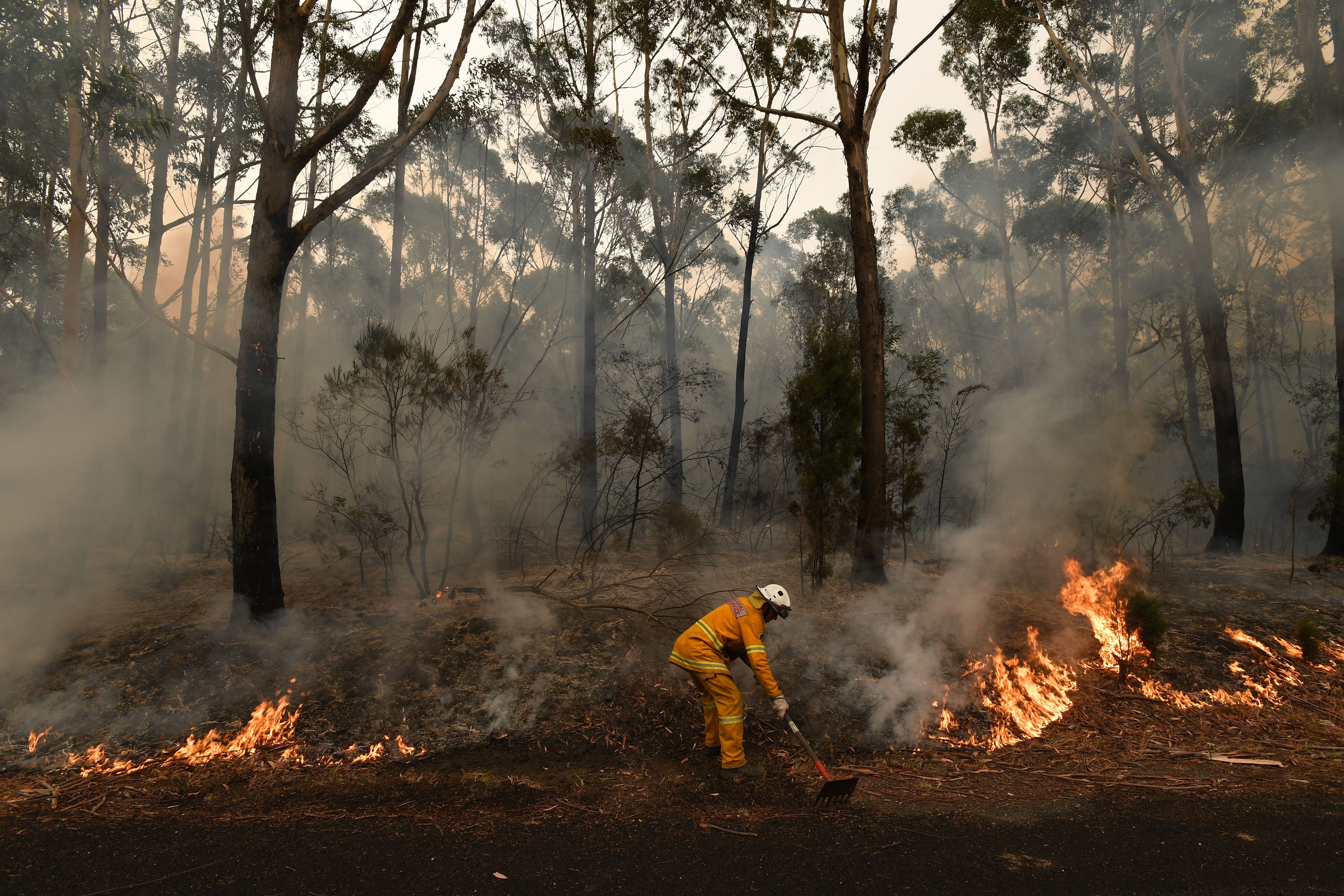 Mandatory Credit: Photo by DEAN LEWINS/EPA-EFE/Shutterstock (10518220i) A firefighter works to contain a small bushfire, which closed the Princes Highway, near Ulladulla, Australia, 05 January 2020. According to media reports, at least 1,200 homes in Victoria and New South Wales have been destroyed by fires this season, at least 18 people have died, and more than 5.9 million hectares have been burnt. Bushfires in Australia, Ulladulla - 05 Jan 2020