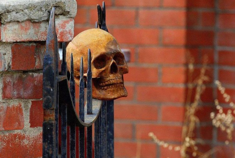 Skeleton head on a gate