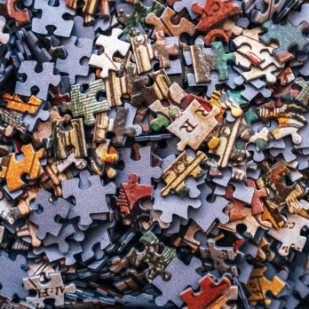 Jigsaw Champions Reveal How to Solve a Jigsaw Puzzle Fast