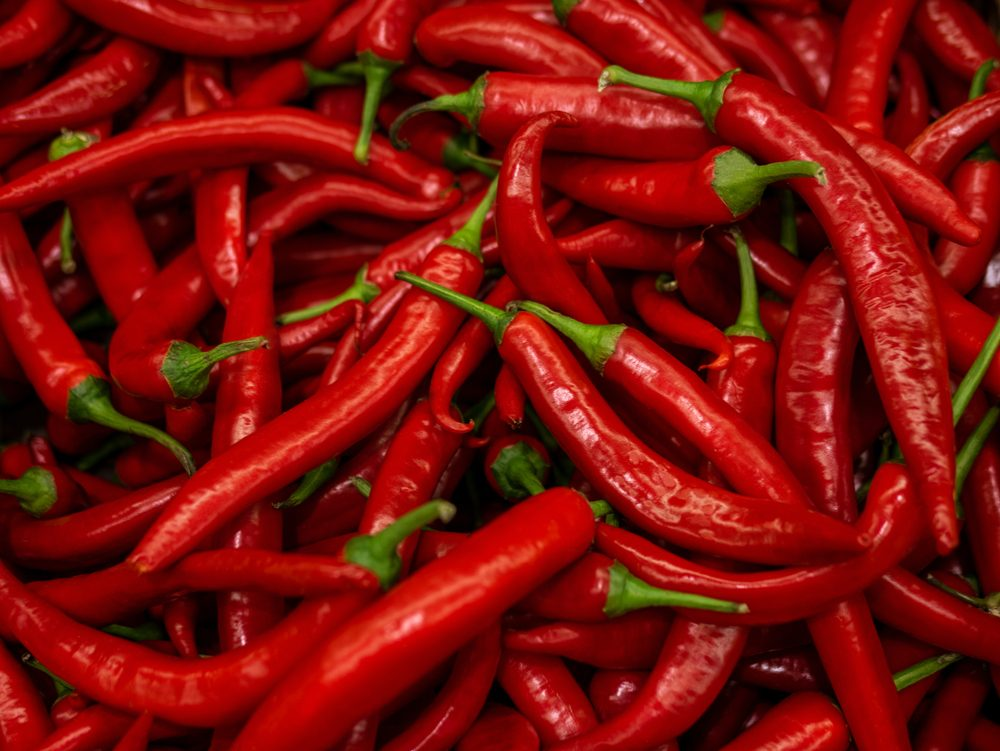 Red hot chilli peppers pattern texture background. Close up. Landscape. A backdrop ofRed hot chilli peppers. Street vegetable market. Group of Red hot chilli peppers