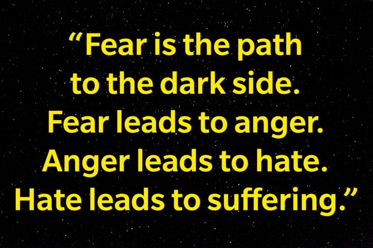 """Fear is the path to the dark side. Fear leads to anger. Anger leads to hate. Hate leads to suffering."""