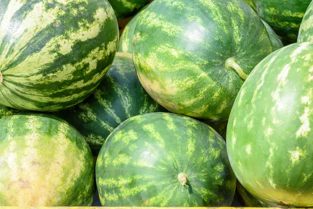 locally grown watermelon for sale outside in summer