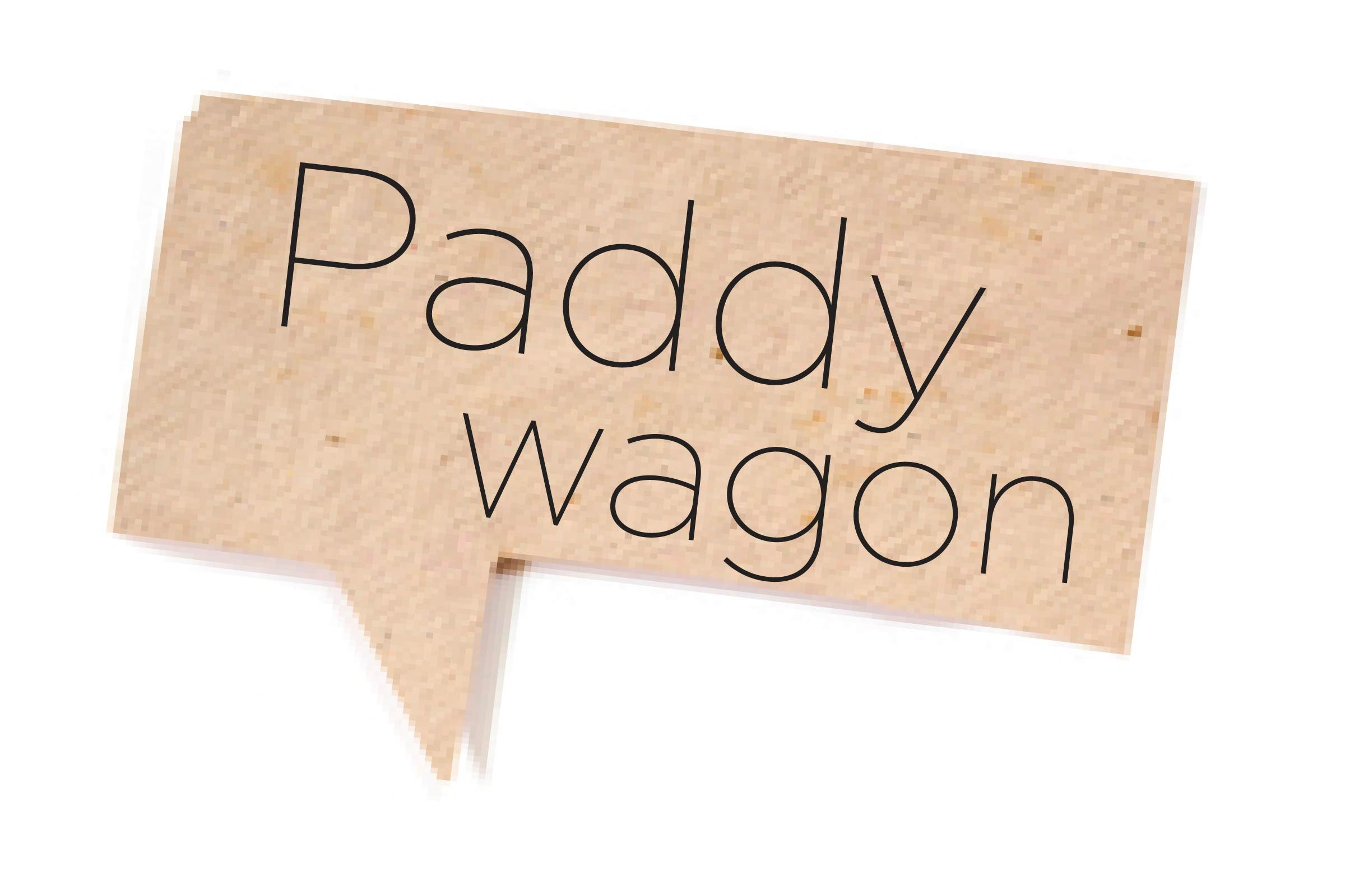 Offensive words - Paddy wagon