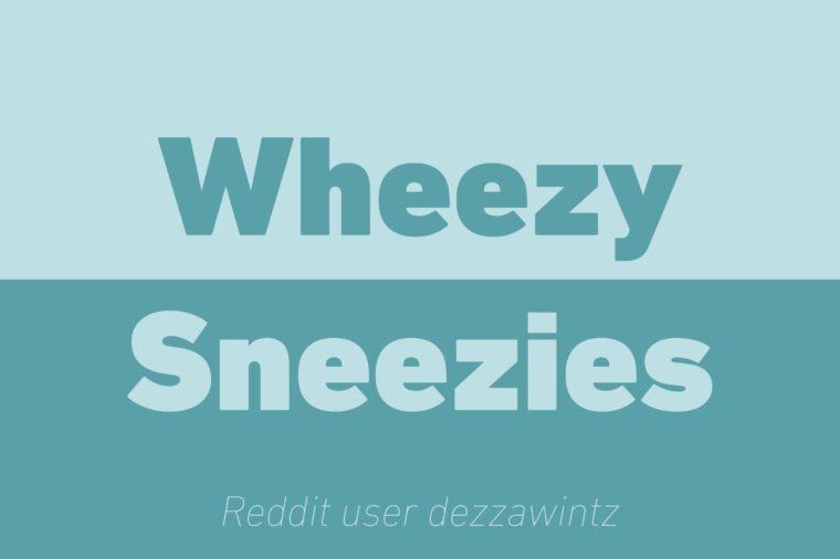 wheezy sneezies walkie talkie reddit