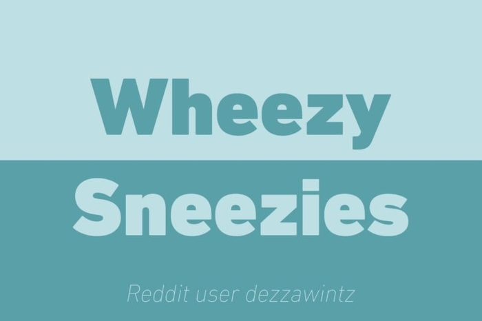 wheezy sneezies walkie talkie reddit