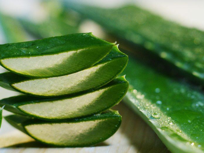 Aloe Vera Home Remedies Hair Loss