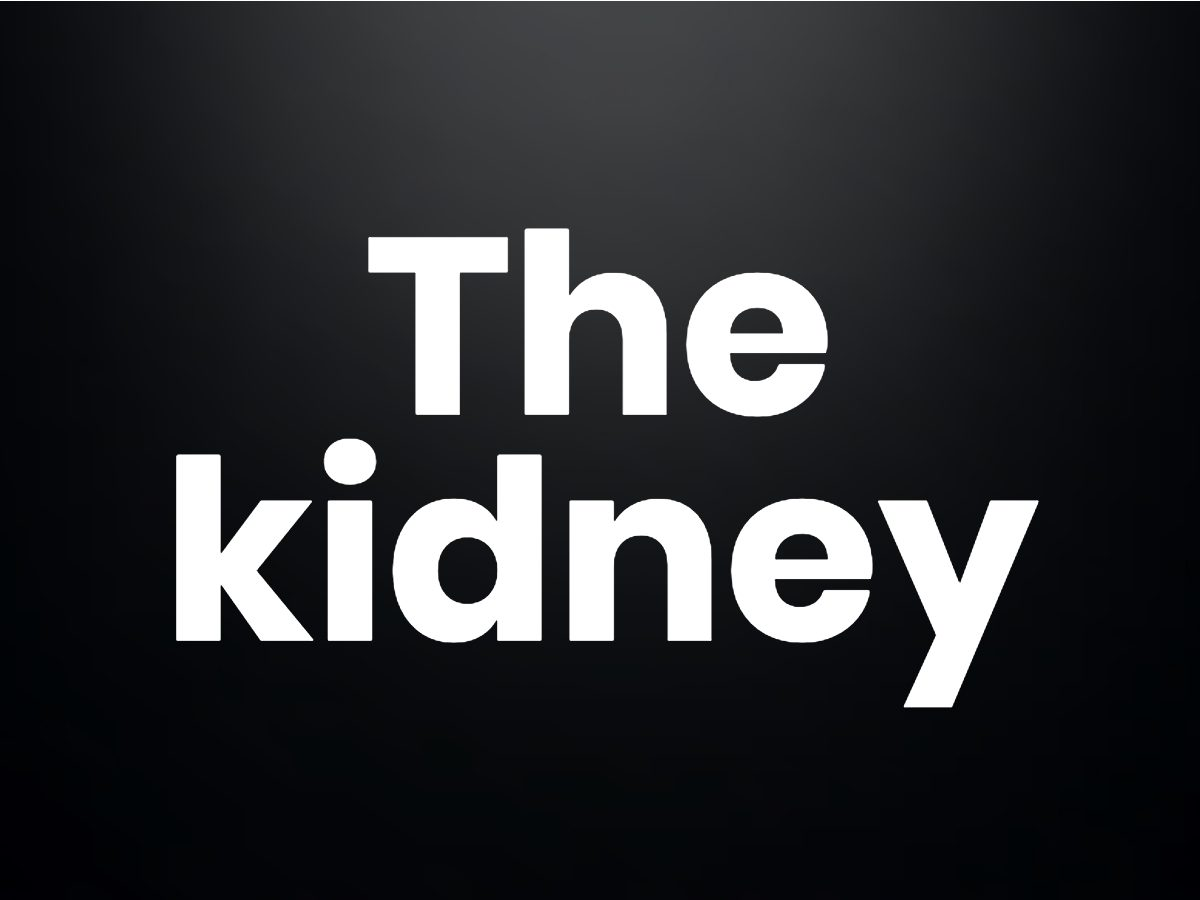 Trivia questions - the kidney