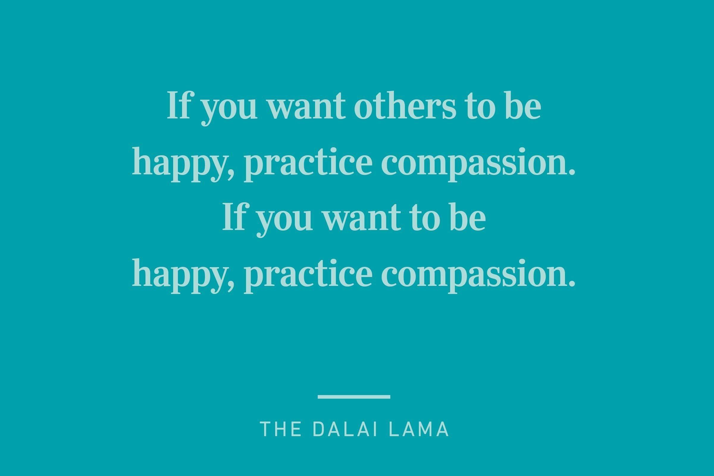 dalai lama happiness quote