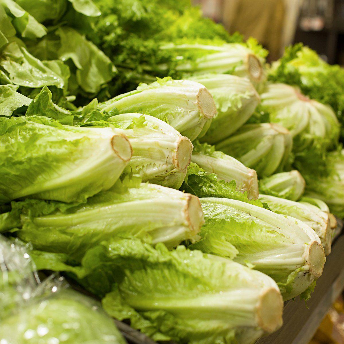 Fresh romaine lettuce in supermarket. Concept of healthy food, bio, vegetarian, diet.