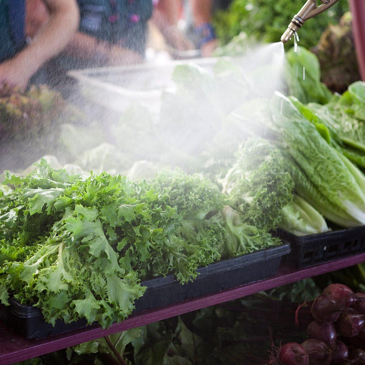 A farmer washes fresh lettuce at a farmers market stall. Abundant fresh produce piled high at a farmers market. Check out my