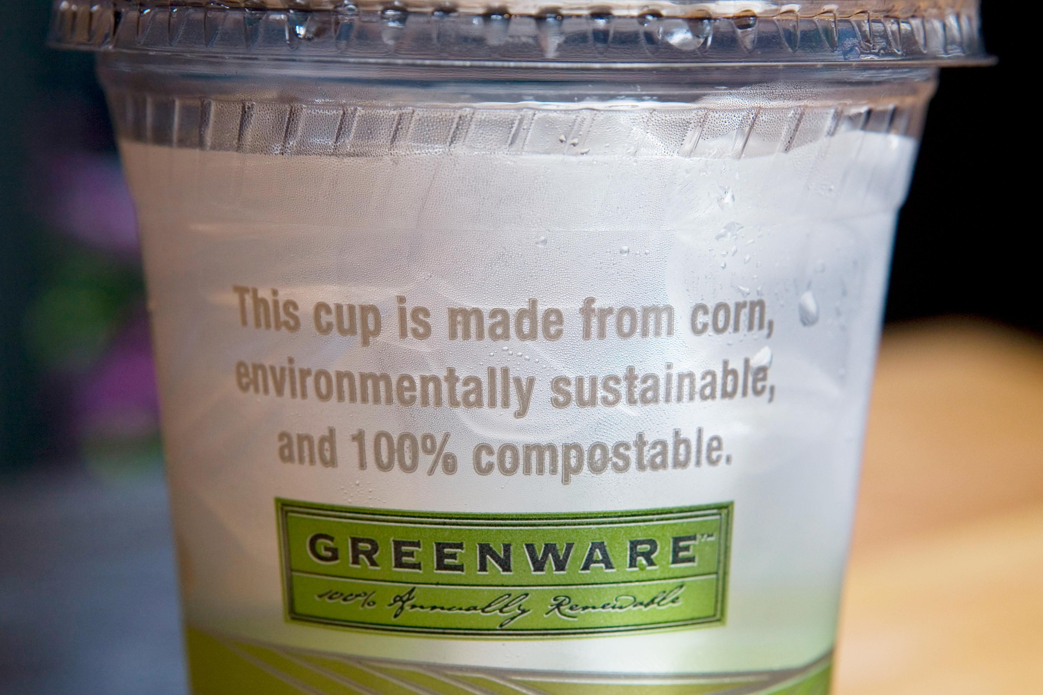 greenware compostable plastic cup