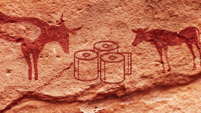 toilet paper cave painting