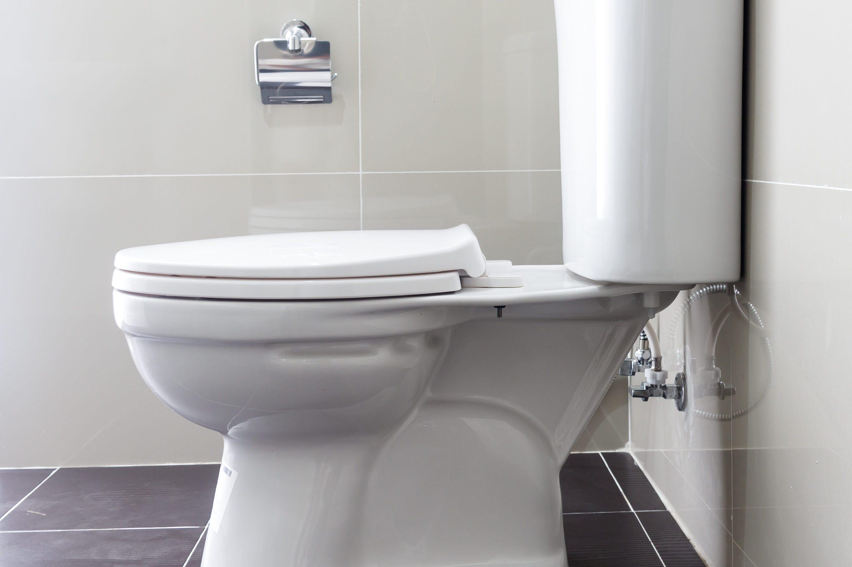 Toilet Bowl In Bathroom
