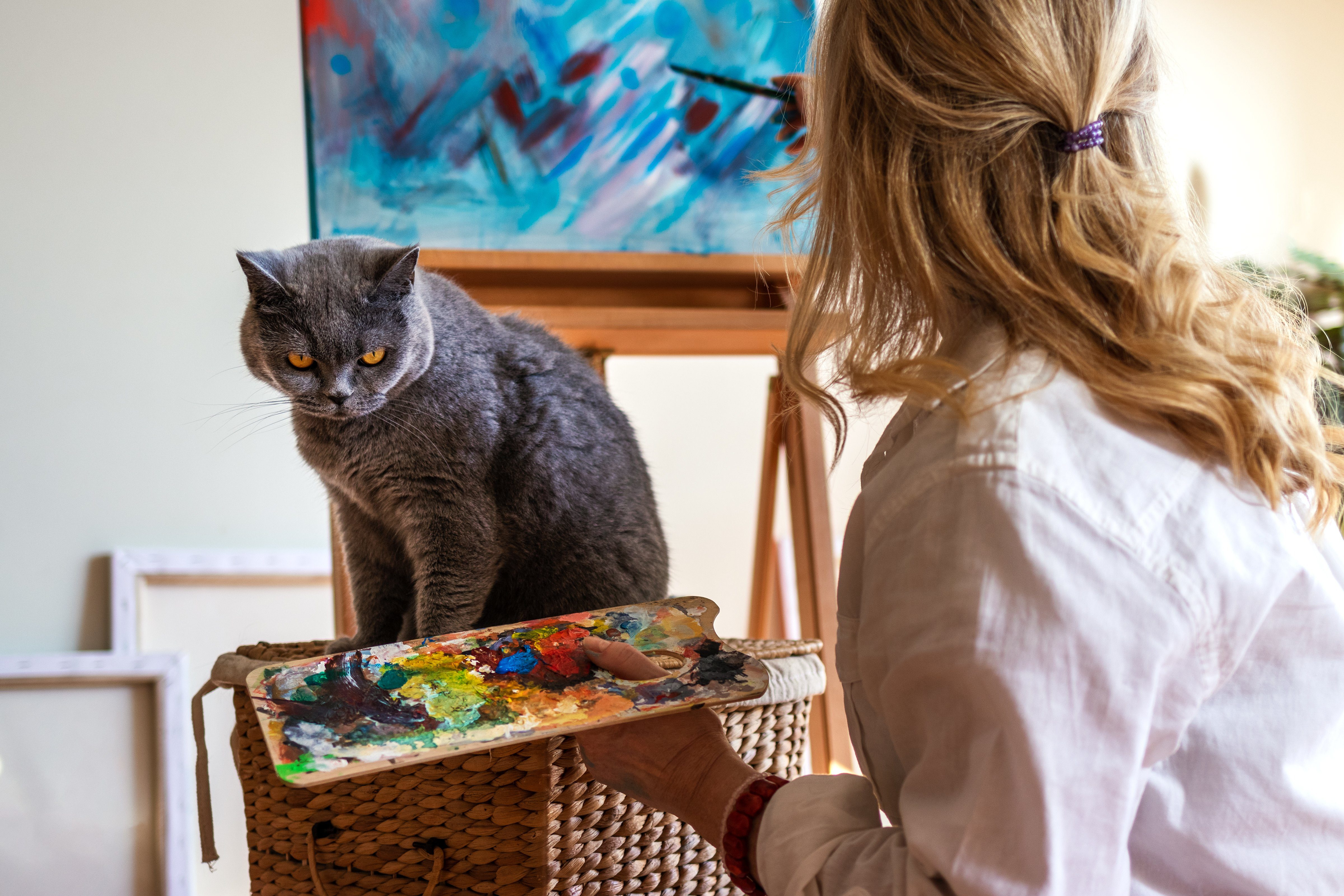 Artist enjoying painting with her british shorthair cat