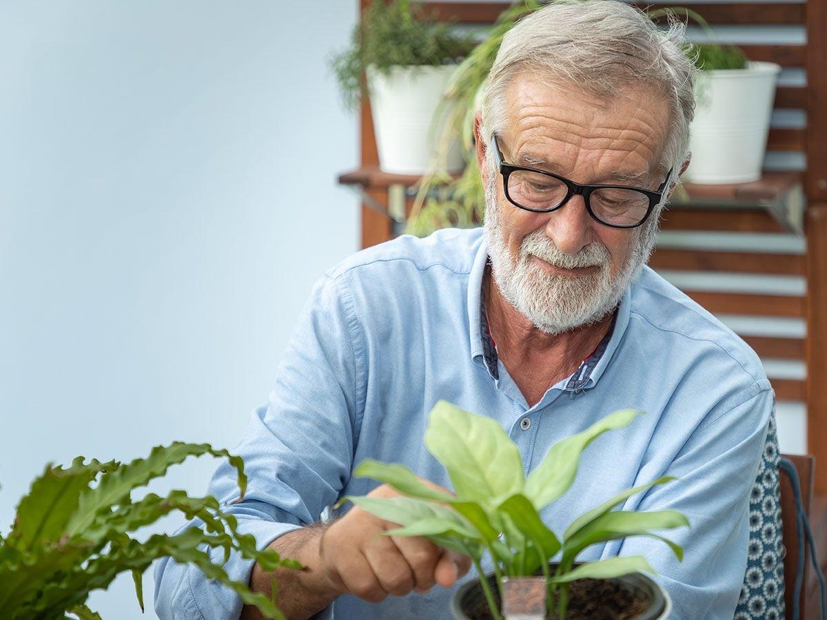 Old Man Planting