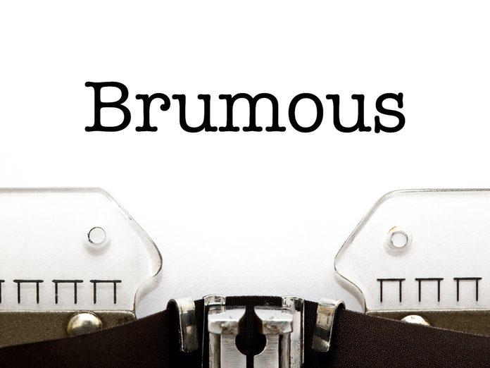 Adjectives: Brumous