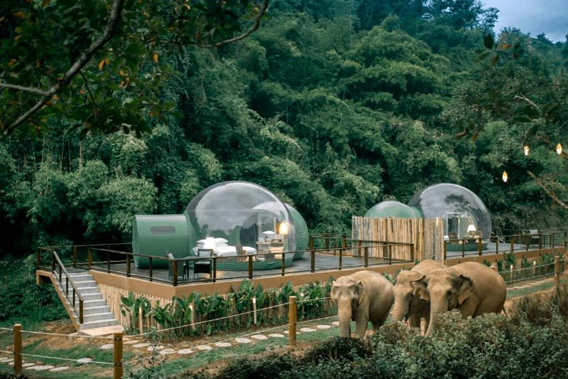 anantara golden triangle jungle bubbles