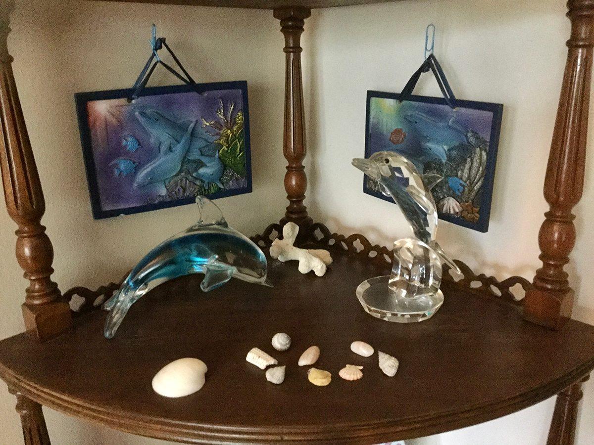 Dolphins shelfie