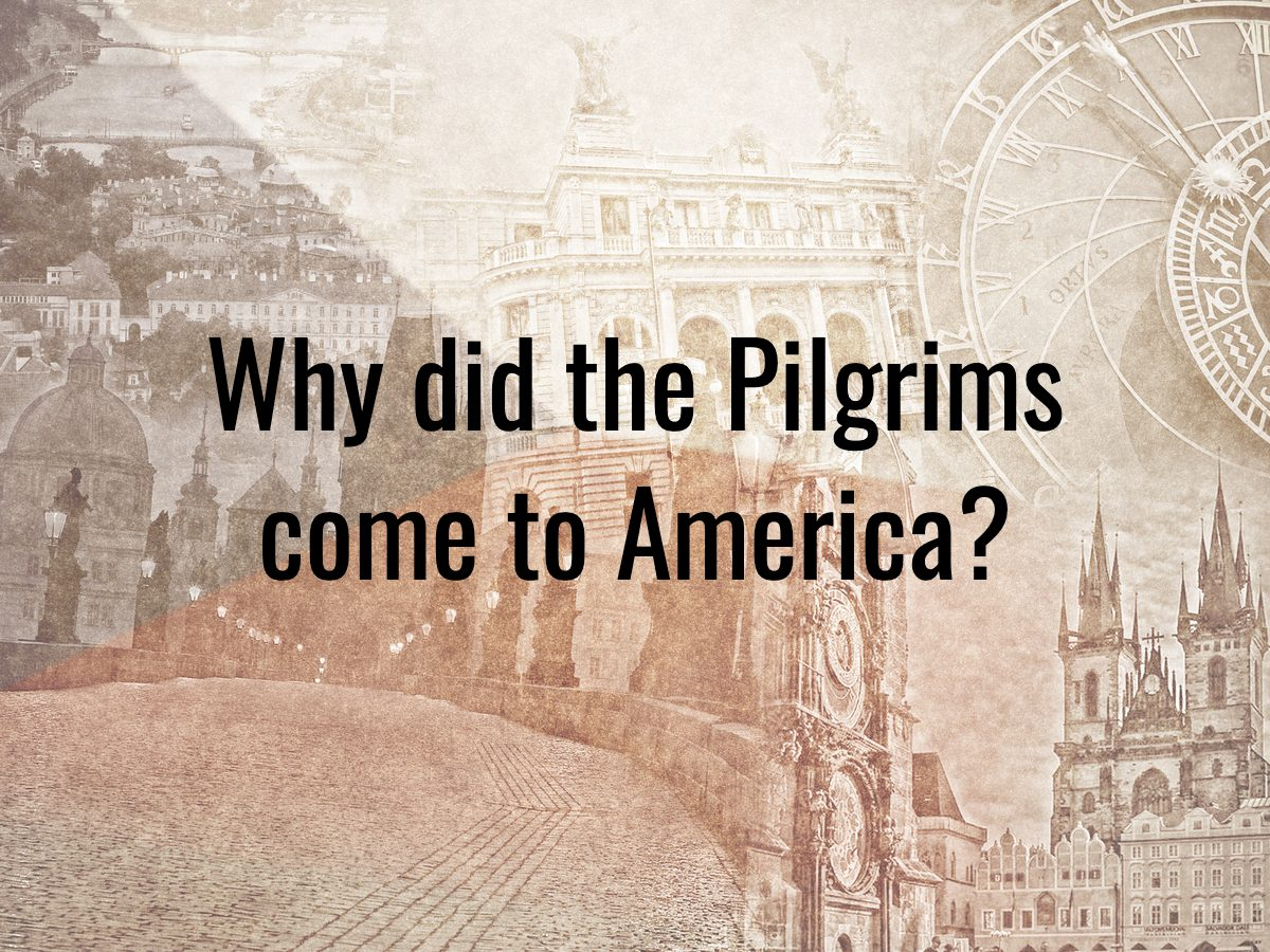 History questions - why did the Pilgrims come to America?