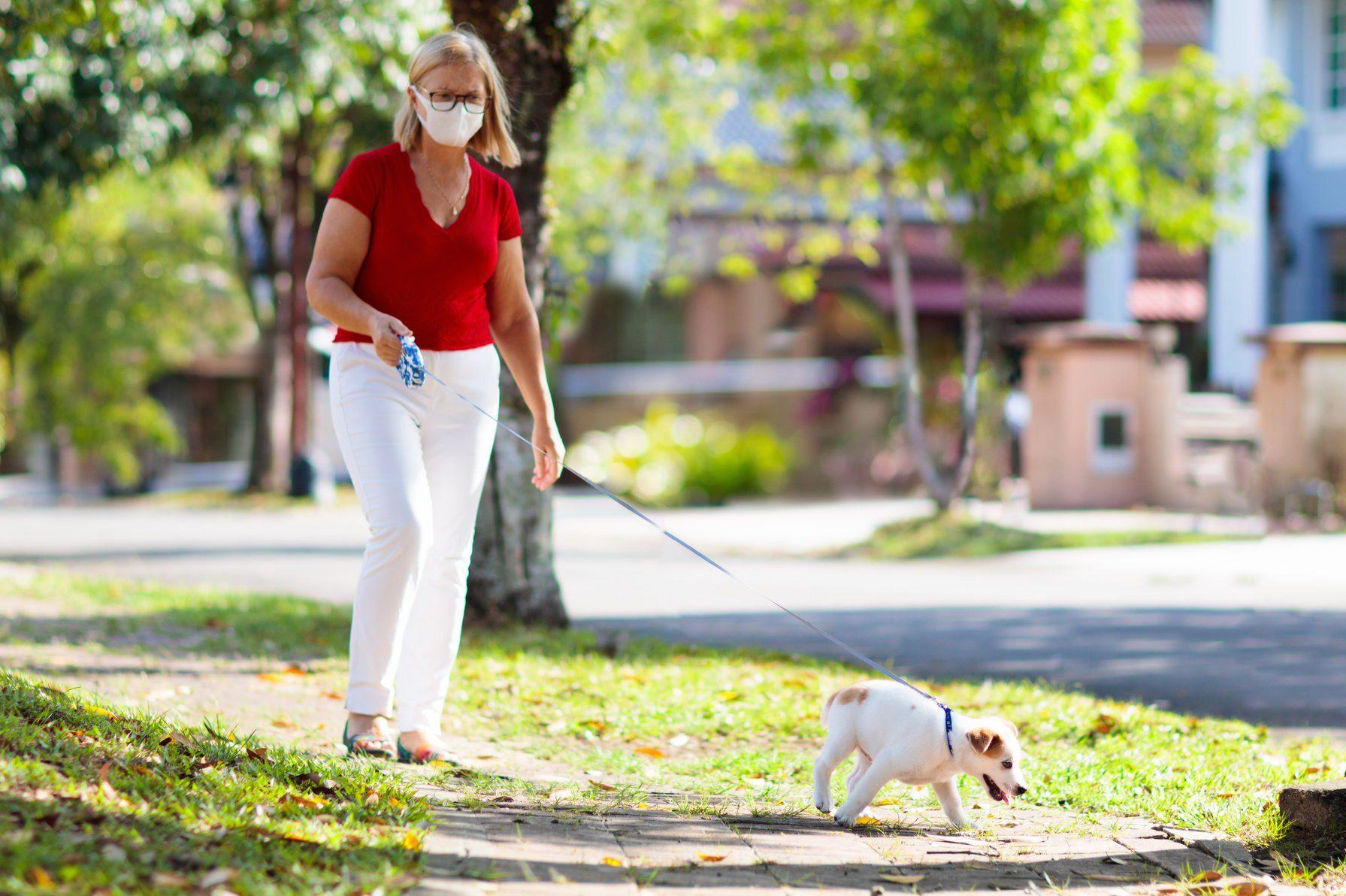 Family walking dog during virus outbreak