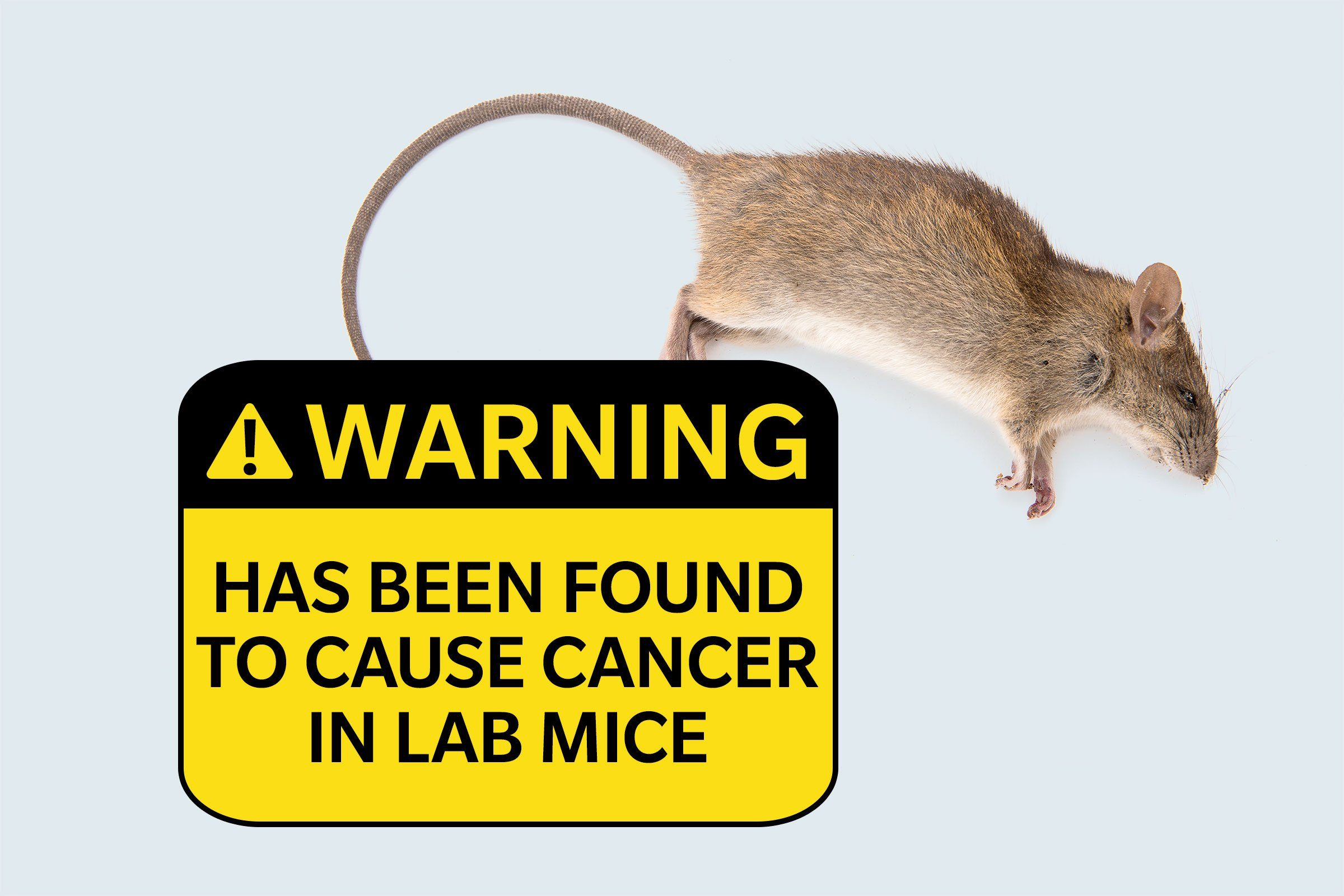 dead rat. warning: has been found to cause cancer in laboratory mice