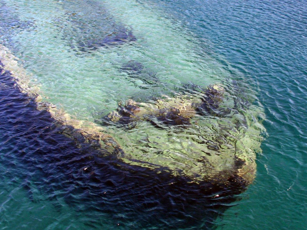 Shipwrecks - Sweepstakes