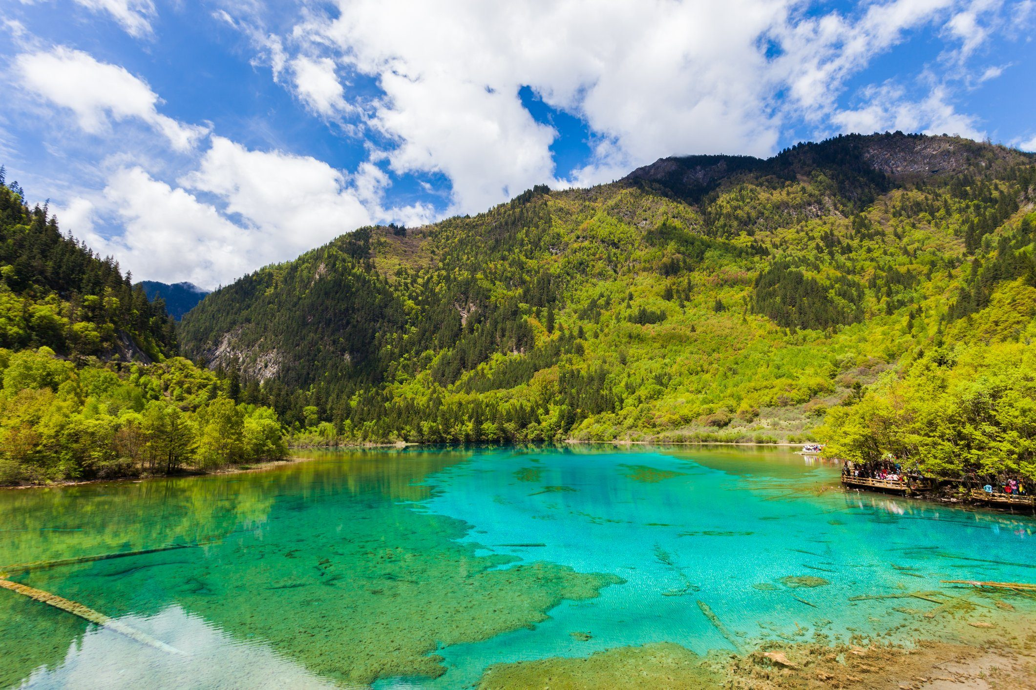 Five-Flowers Lake at Jiuzhaigou, Sichuan, China
