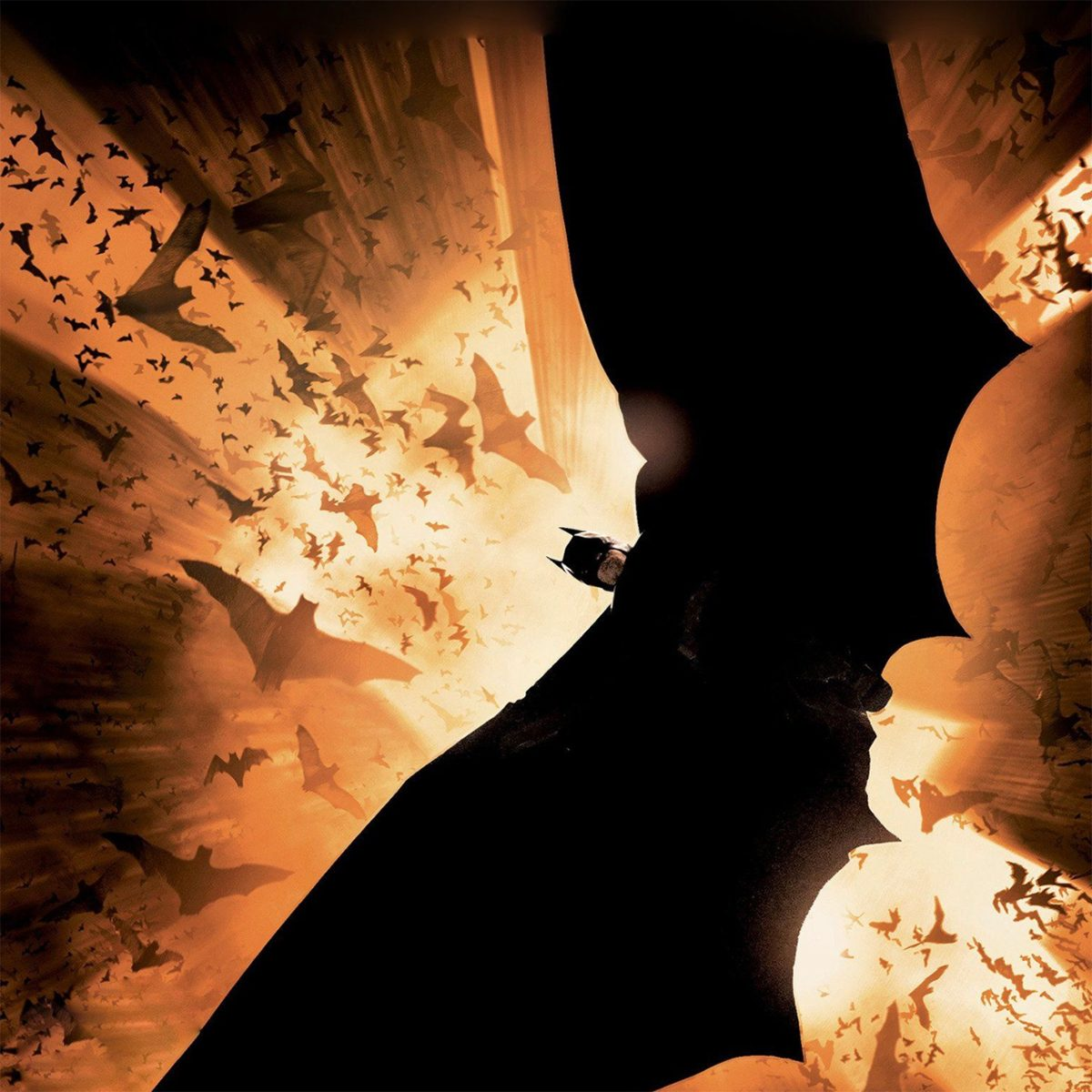 Best action movies on Netflix Canada - Batman Begins