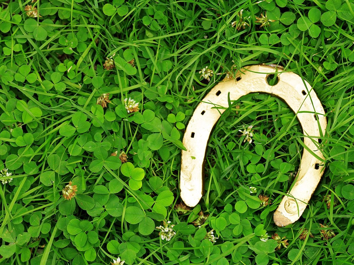 A horseshoe on grass, a traditional symbols for Patrick's Day