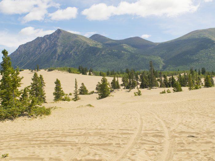 Canada geography facts - Carcross Desert, Yukon