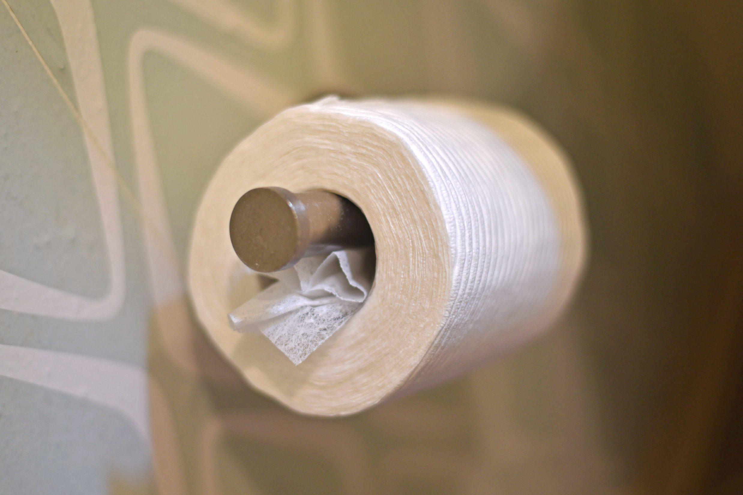 toilet paper dryer sheets life hacks