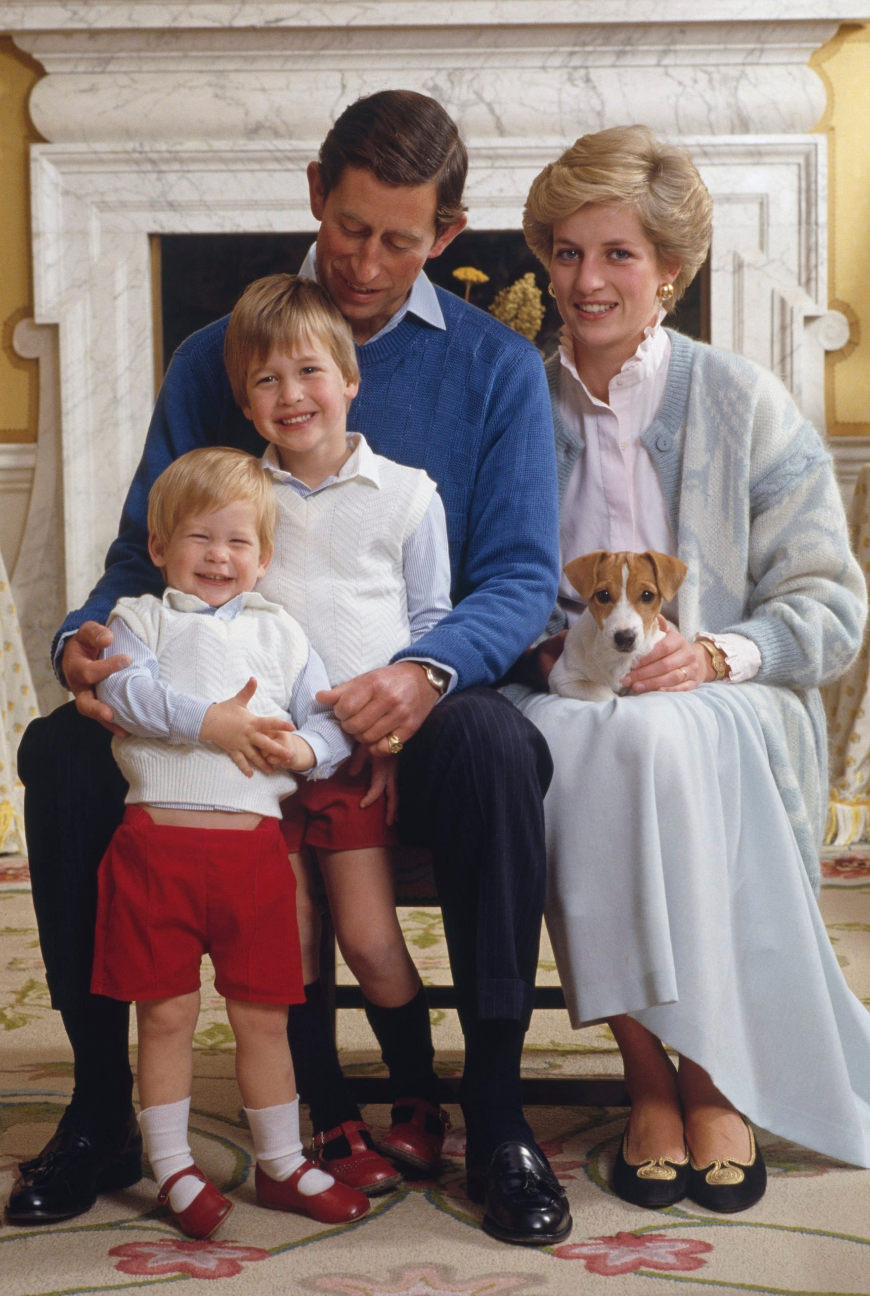 Charles, Diana And Sons
