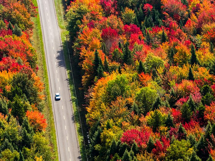 Fall 2021 Canada - Autumn leaves on a Quebec road trip
