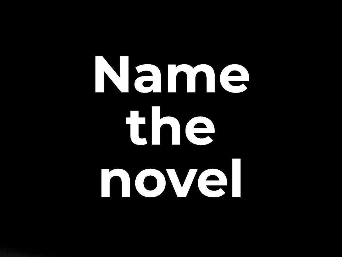 Name the novel