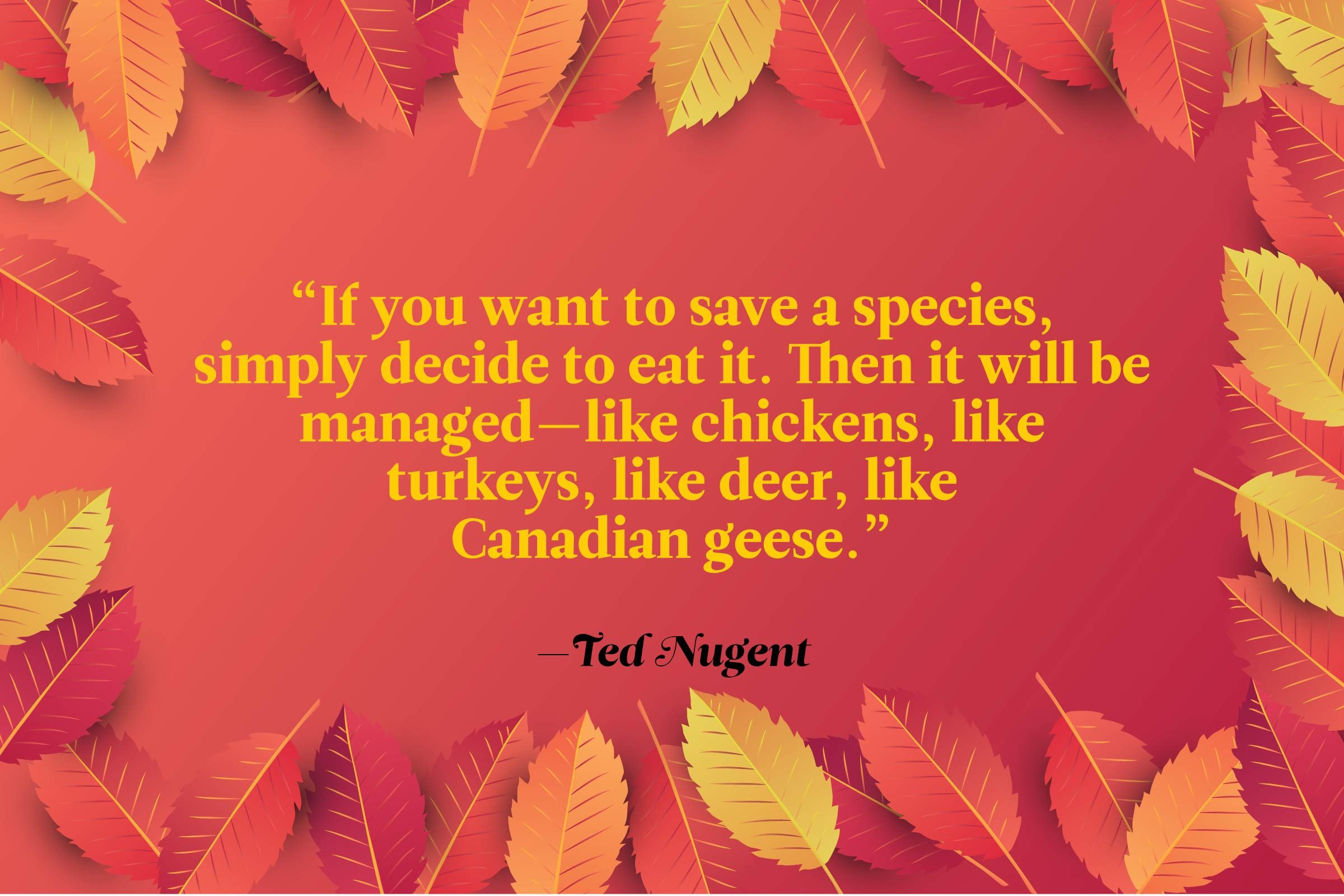 Funny Thanksgiving Quotes - Ted Nugent