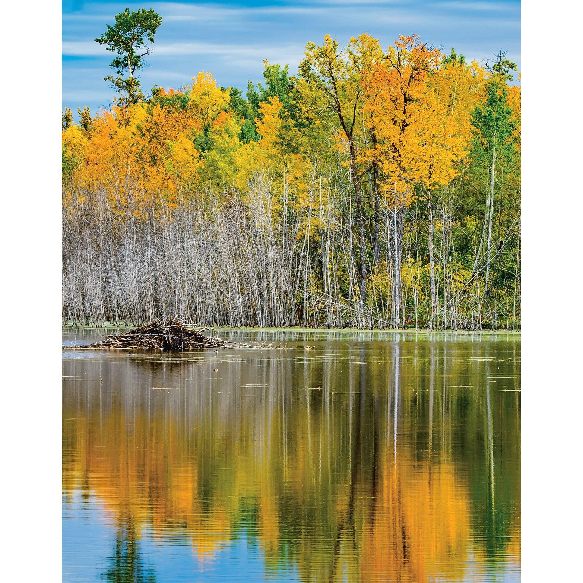 Autumn in Canada - fall foliage reflected in lake