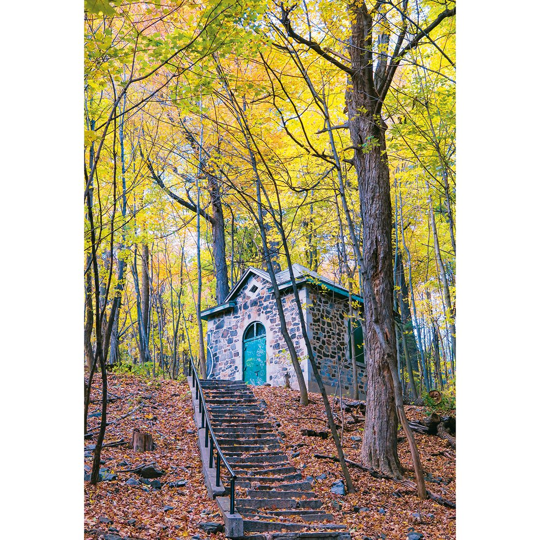 Autumn in Canada - Mount Royal Park in fall