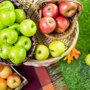 Best apples for apple pie - Freshly picked organic apples on the farm.