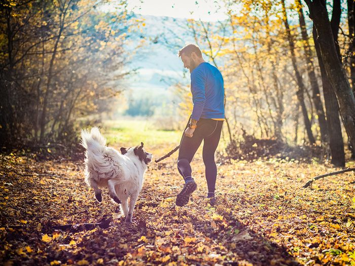 Brain exercises - happy dog and man playing in autumn forest