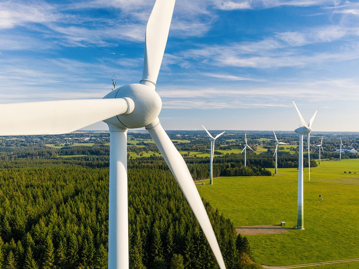 Good news - wind turbines and birds