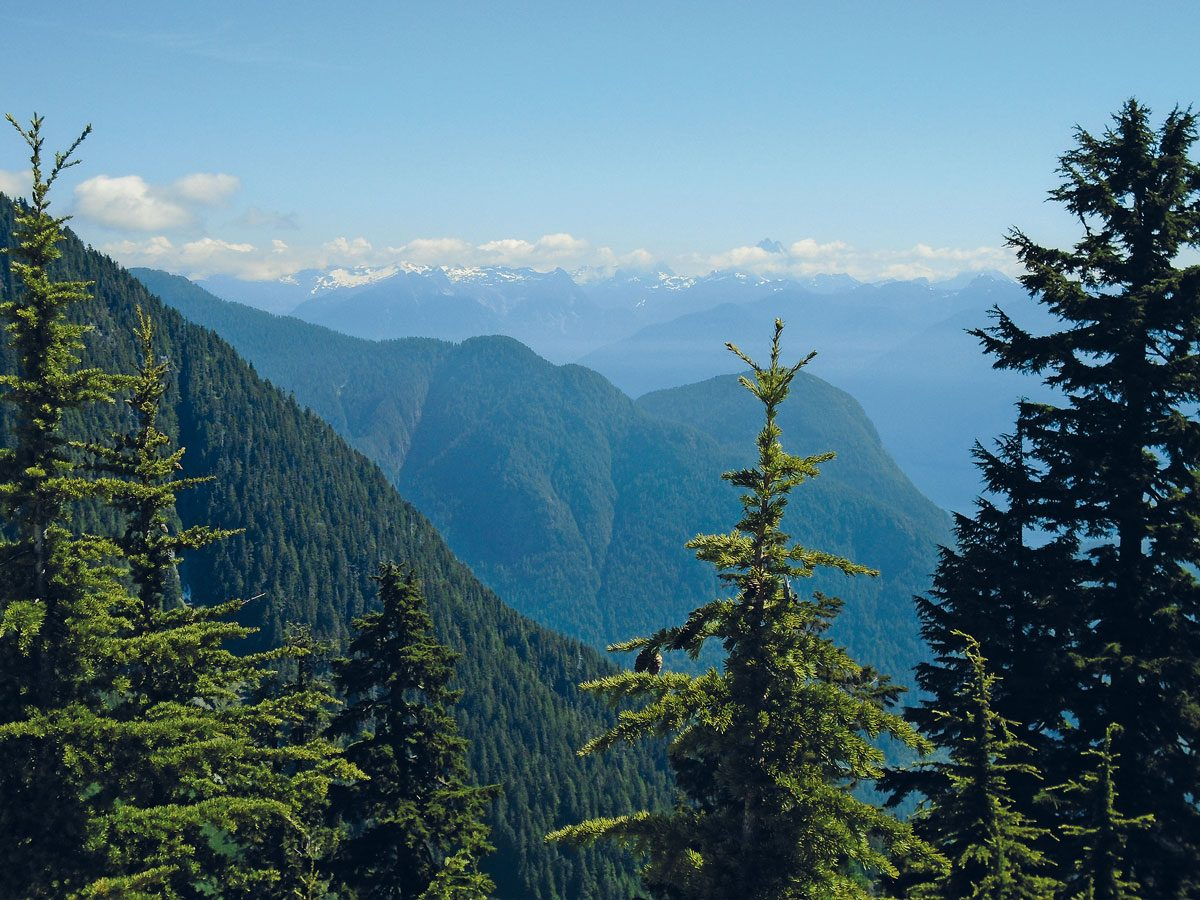 View from atop Burke Mountain