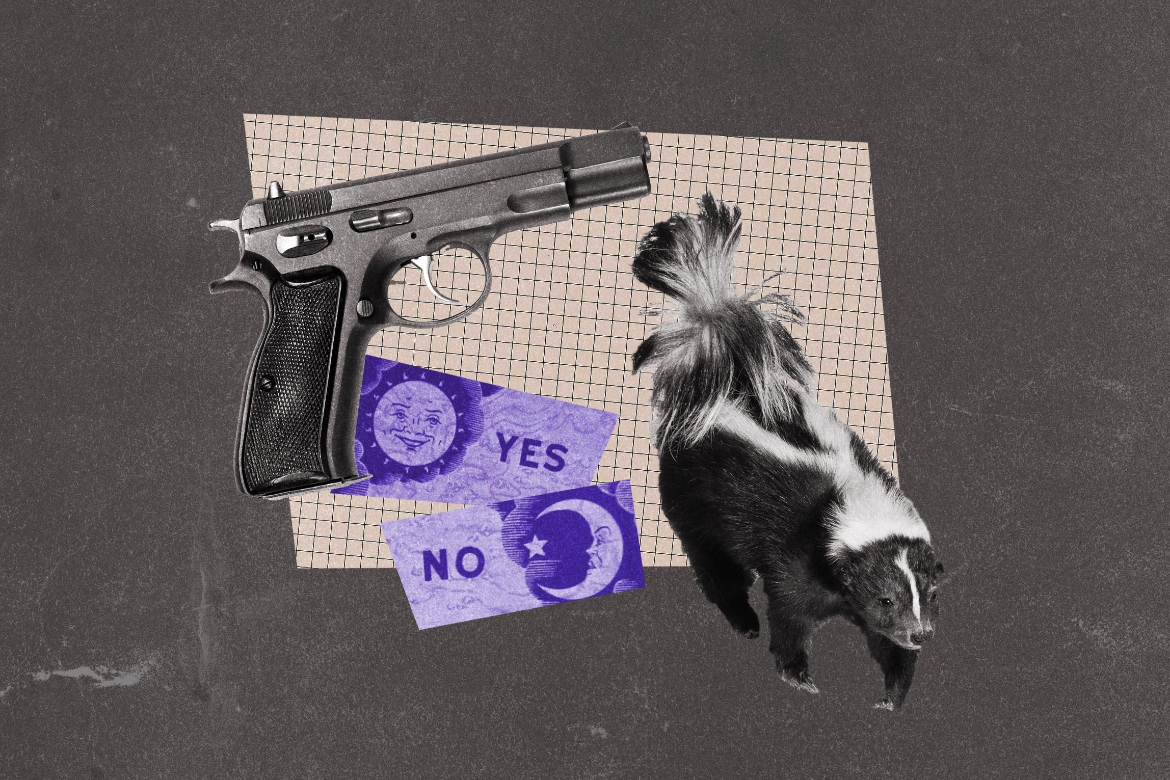 Collage of skunk, gun, and ouija board.
