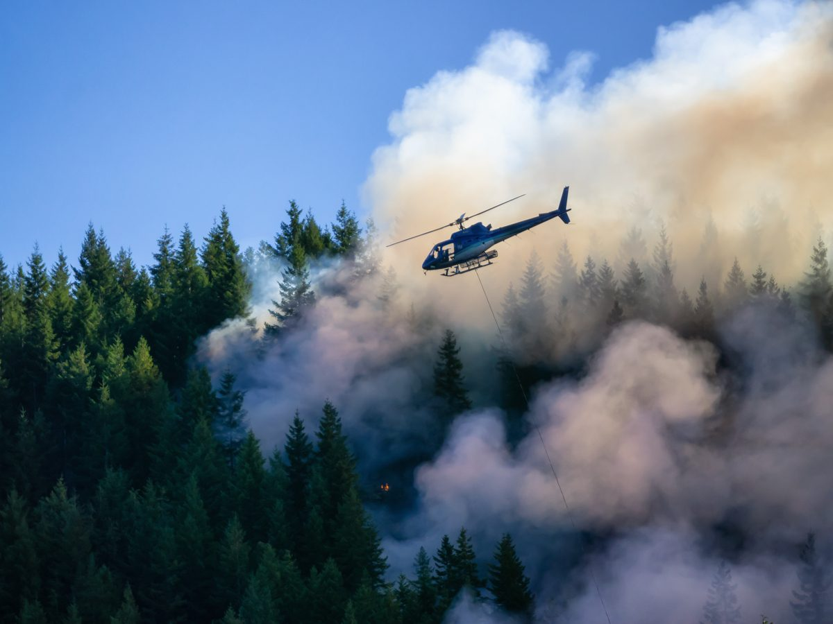 Wildfire in British Columbia