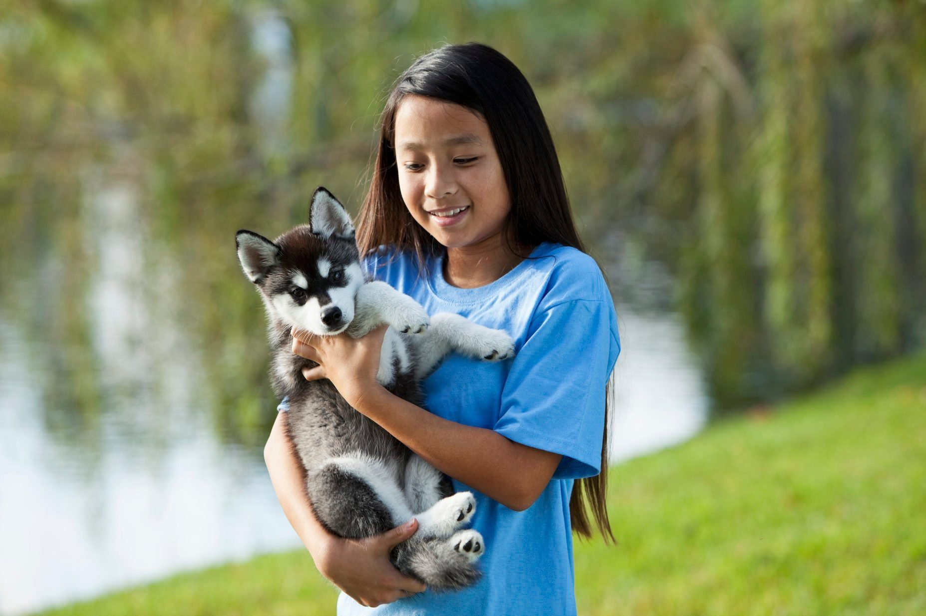 Most affectionate dog breeds - Girl holding puppy