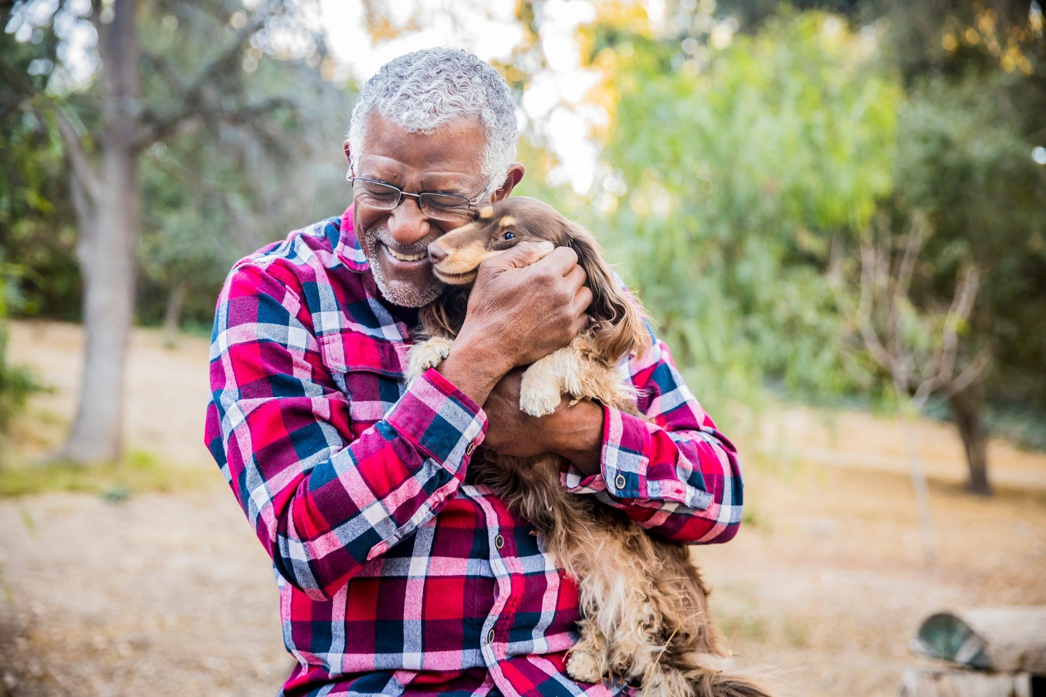 Most affectionate dog breeds - Man and his best friend