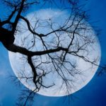 What a Blue Moon on Halloween Means for Your Zodiac Sign