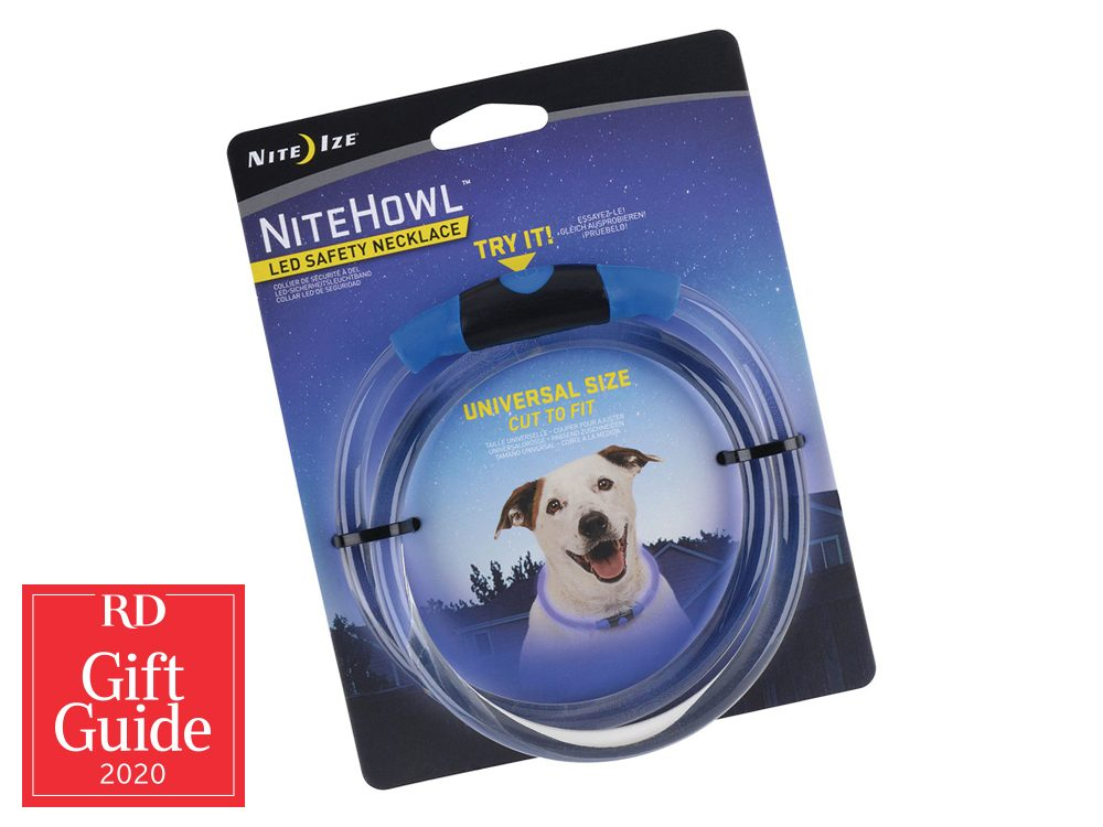 Canadian gifts - holiday gift guide - Walmart LED illuminating dog necklace