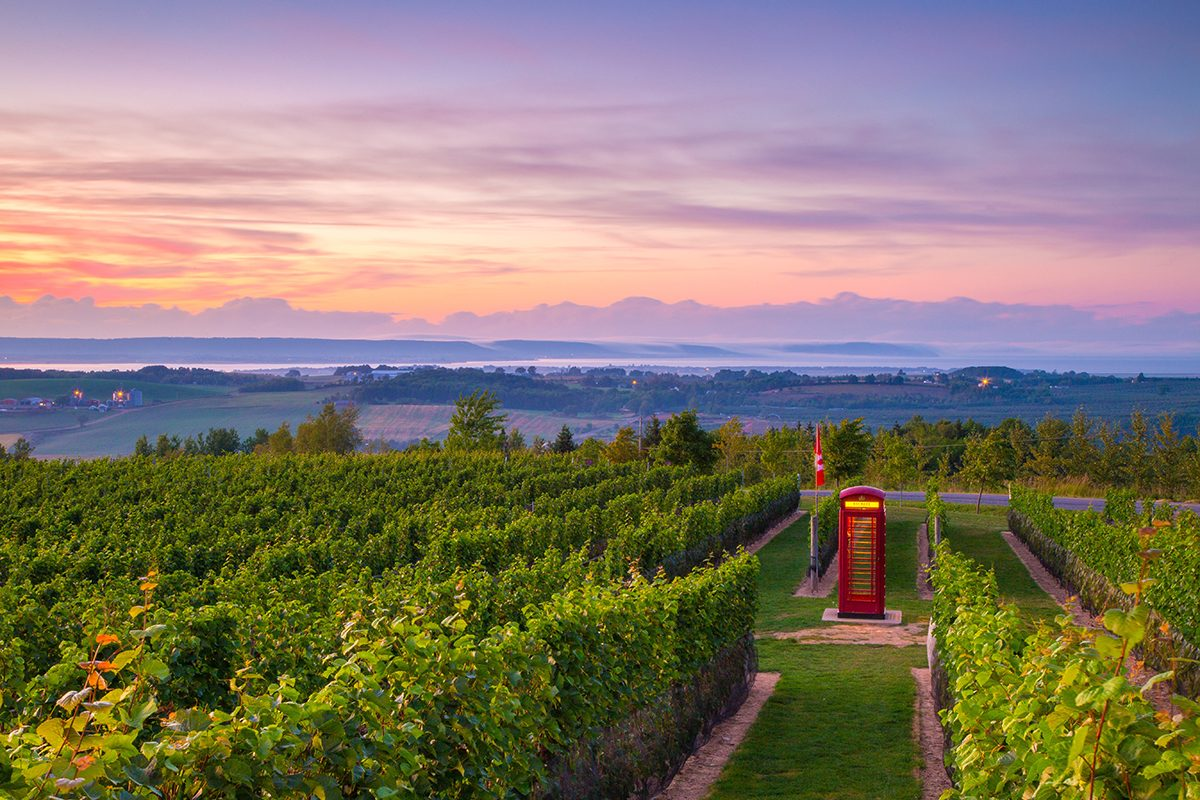 Day trips from Halifax - Annapolis Valley winery