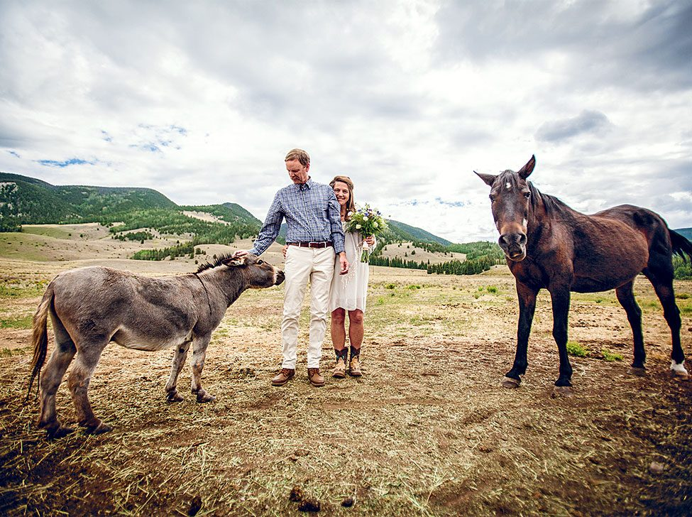 The author and her husband on their wedding day, with a donkey and horse as guests.