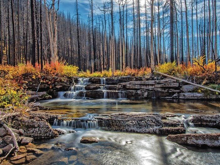 Fall Pictures - George Vanderberg
